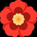 طراحی سایت گل فروشی